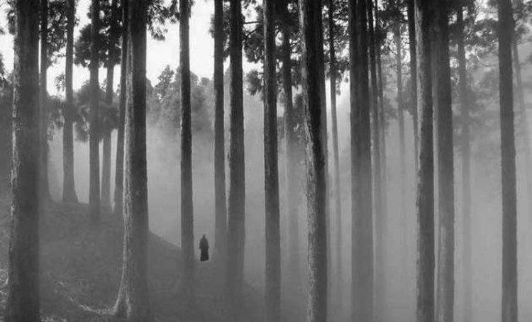 कुर्सियांग के जंगल में घूमता सिर कटा व्यक्ति