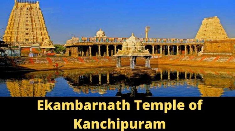 एकम्बारेश्वर शिव मंदिर: 3500 साल पुराना आम का पेड़ (Ekambareswarar Temple)