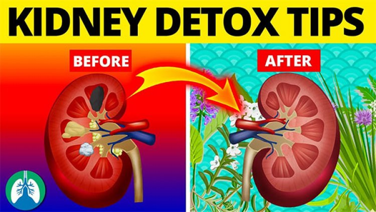 Clean Your  KIDNEYS IN Rs. 5.00 or Even Less
